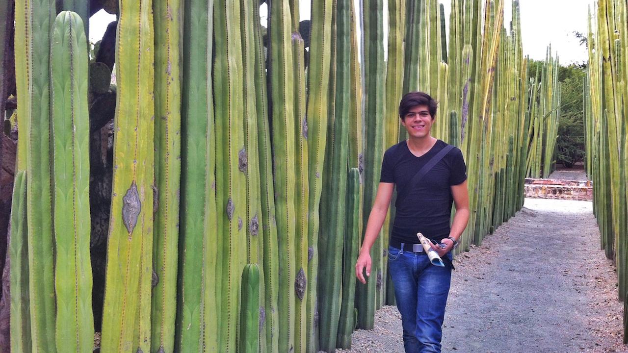 jardin-botanico-garden-oaxaca