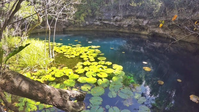 friendly-touring-cenotes-cancun
