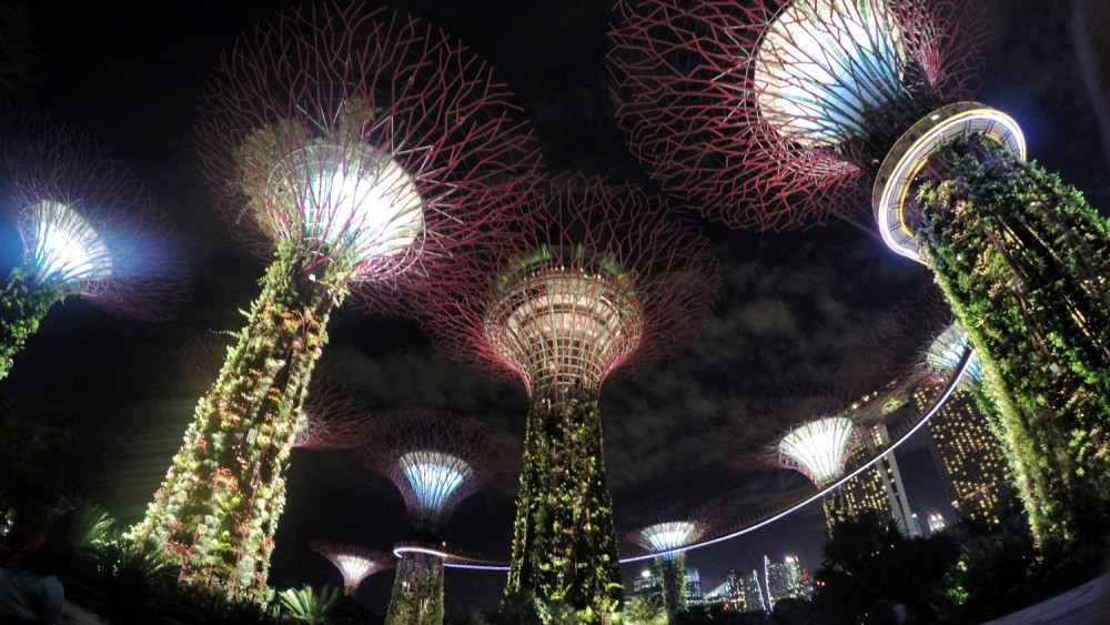 friendly-touring-singapore-gardens-by-the-bay